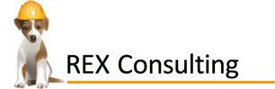 REX Consulting